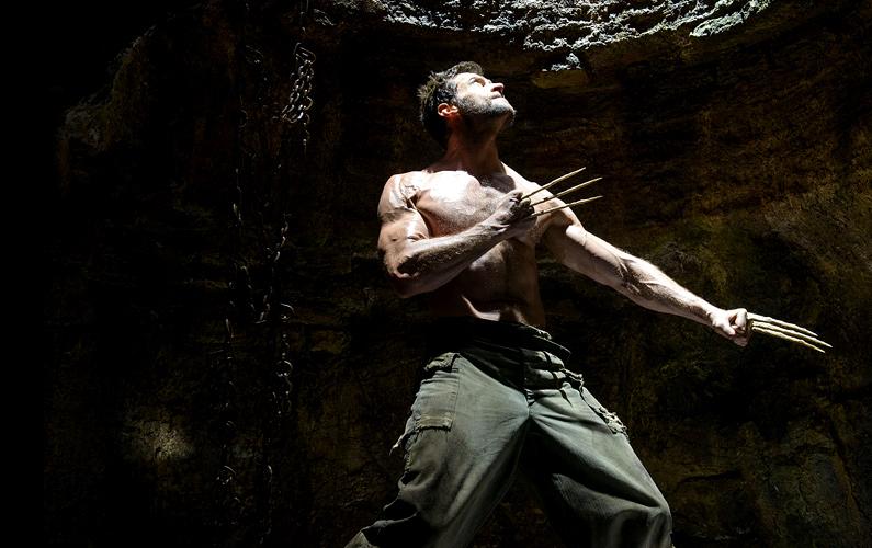 The Wolverine (2013) H...