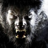 Wolfman movie